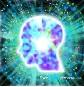 Το κομπιούτερ του εγκεφάλου και οι επιληπτικές κρίσεις