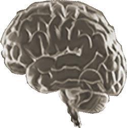 Το «ύπουλο» τραύμα του εγκεφάλου και οι διανοητικές διαταραχές