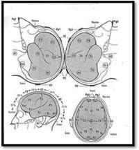 Νευρολογικές παθήσεις και νευροφυσιολογικός έλεγχος