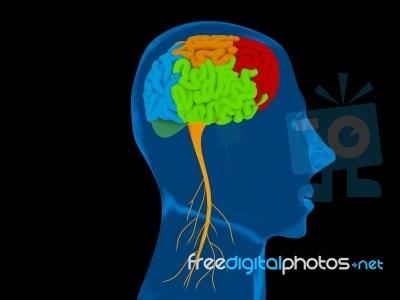 Λευκοεγκεφαλοπάθεια και θρομβώσεις