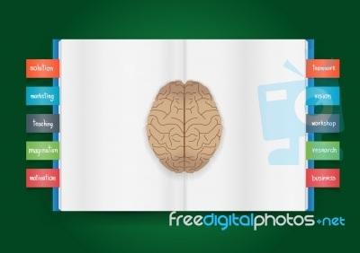 Ο κατάλληλος ερεθισμός «ξυπνάει» τη σωστή μνήμη