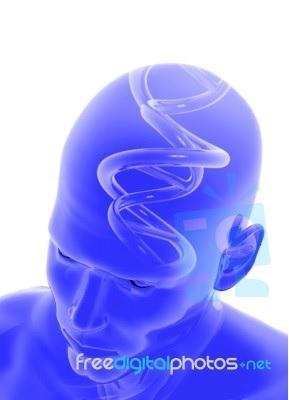 Κεφαλαλγία, αντιφωσφολιπιδικό σύνδρομο, νεφρά